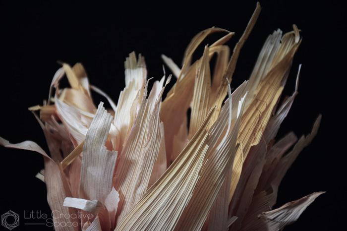 Dried Corn Husks - 365 Project
